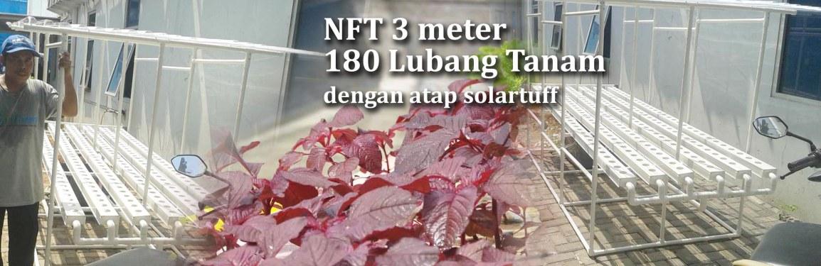 Pengiriman Starterkit Hidroponik NFT 3 Meter 180 Lubang Tanam dengan atap Solartuff ke TanjungPriuk
