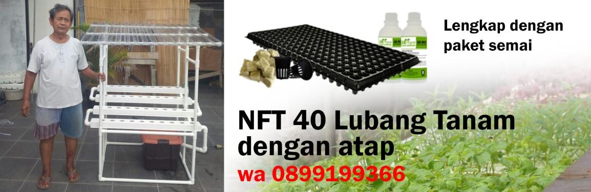 Pengiriman ke Rawamangun NFT 40 Lubang Tanam denganatap